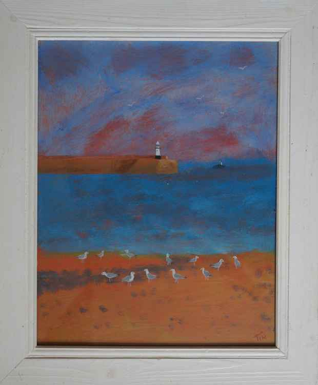 Gull Gathering, St Ives. -