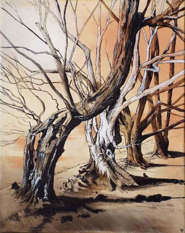 Winter Mendip trees