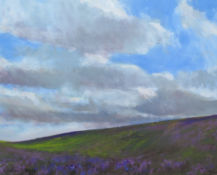 Farndale Heather in the NorthYorkshire Moors. - Image 0