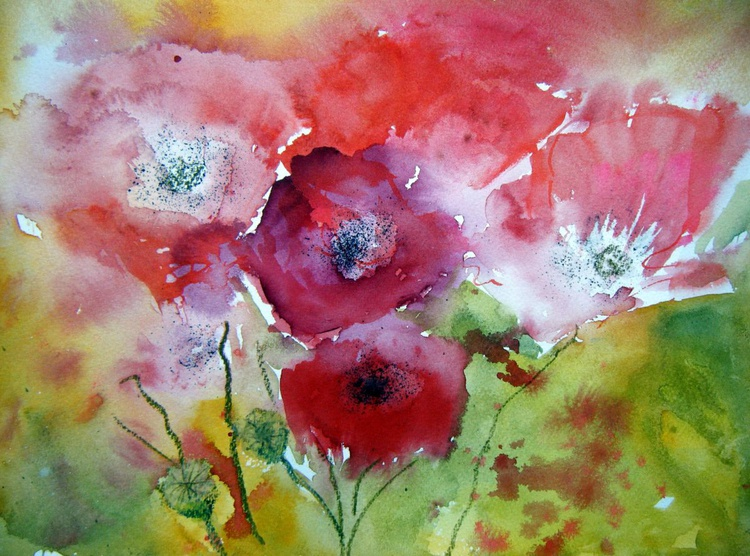 Poppies in the Field - Image 0