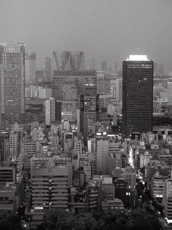 View of Tokyo, from the Japan Notebook. - Image 0