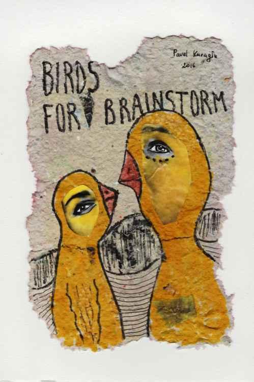 Birds for brainstorm -