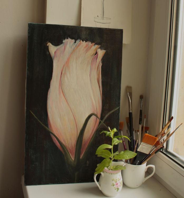 pink lisianthus - Image 0