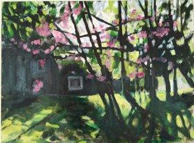 Back Yard Red Bud Tree by Domenica Brockman