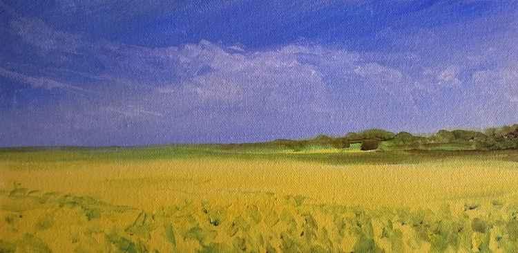 Kent Fields Spring -