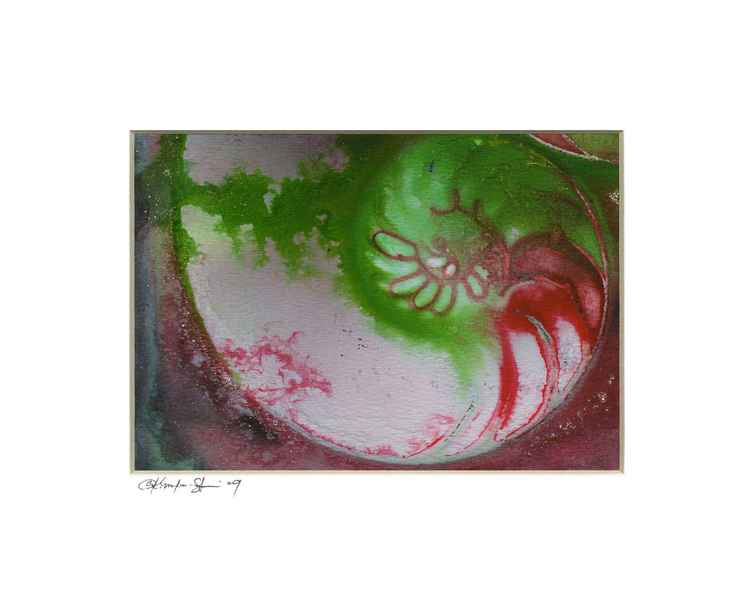 Sea Shell Watercolor Painting, Ocean - Nautilus Shell No. 930