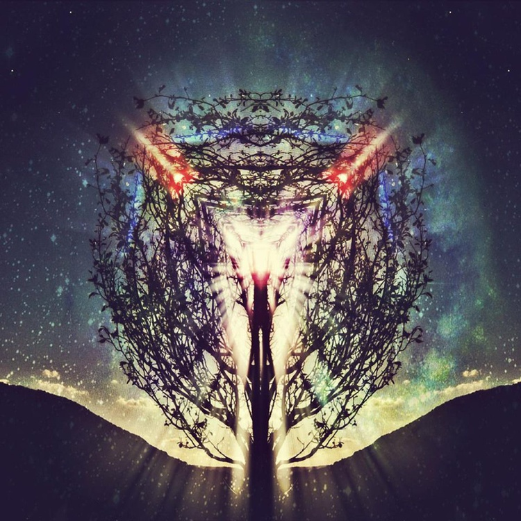 Portal - Image 0