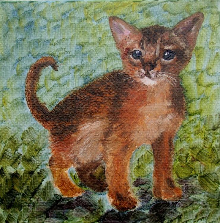 Kitten - Image 0