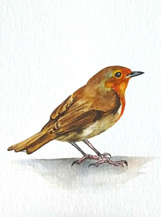Robin 2 - Image 0