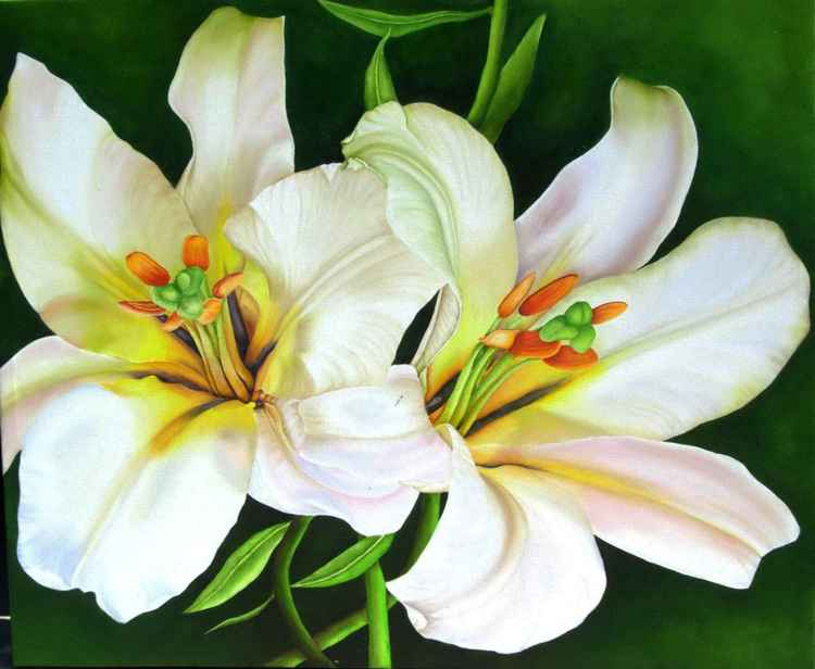 Lilies in Motion -