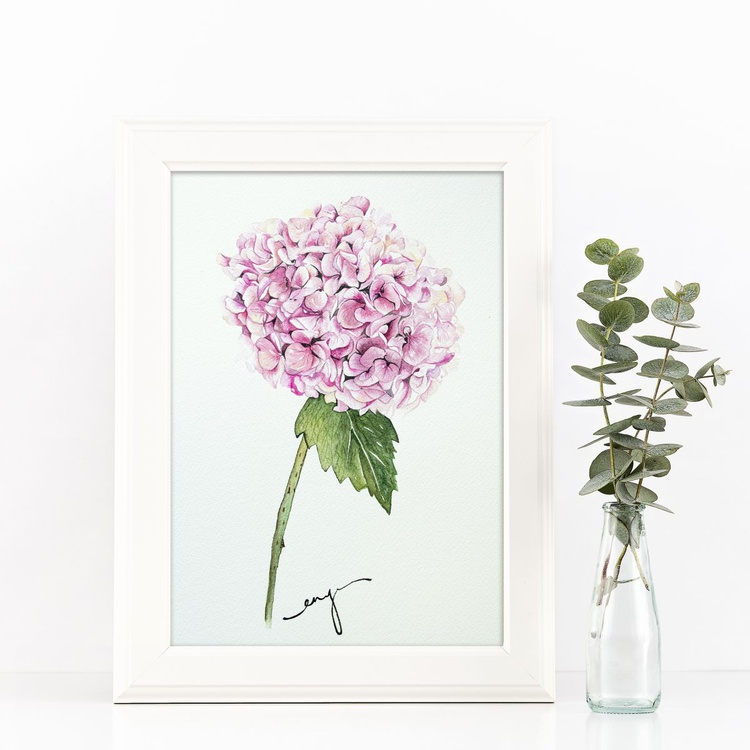 Pink hydrangea - Image 0