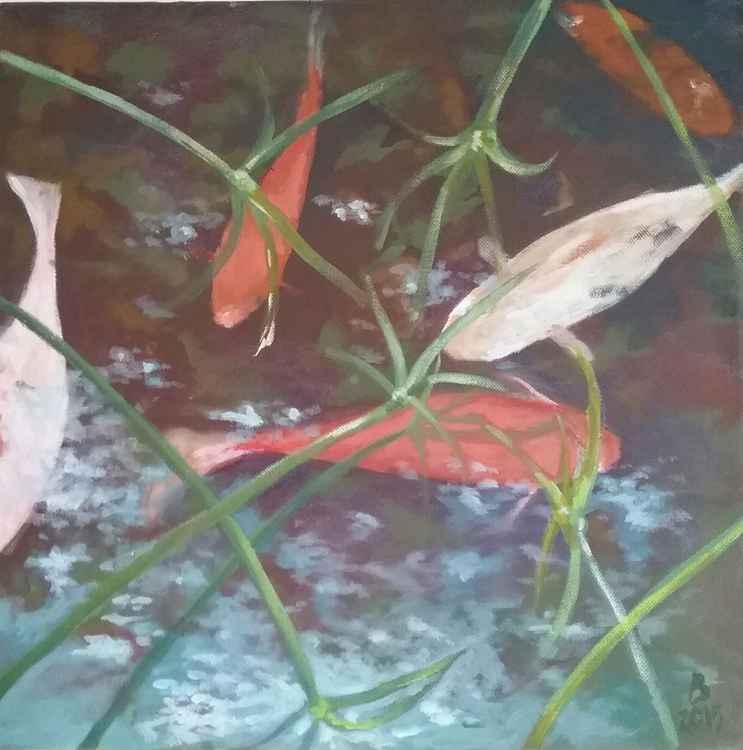 Koi and reeds