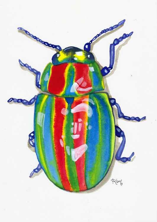 Rainbow Bug -