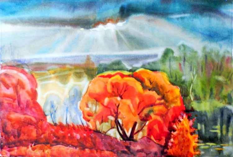 autumn rays -