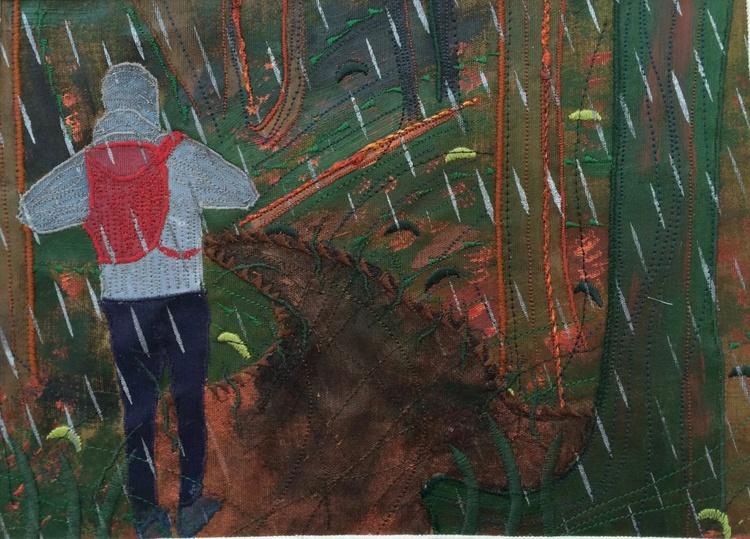 Rain Project.  A Walk in the Rain, Dartmoor, Devon 2016. - Image 0