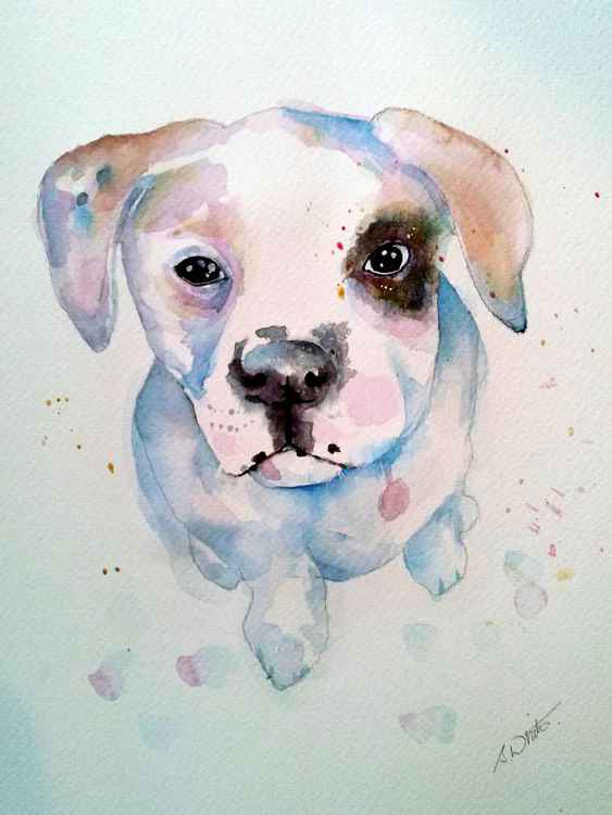 Puppie Watercolour