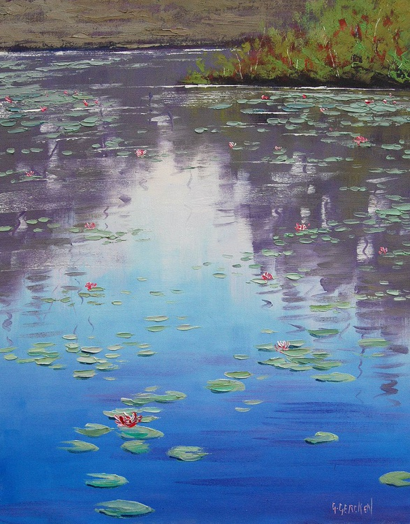 Lily pond reflections - Image 0