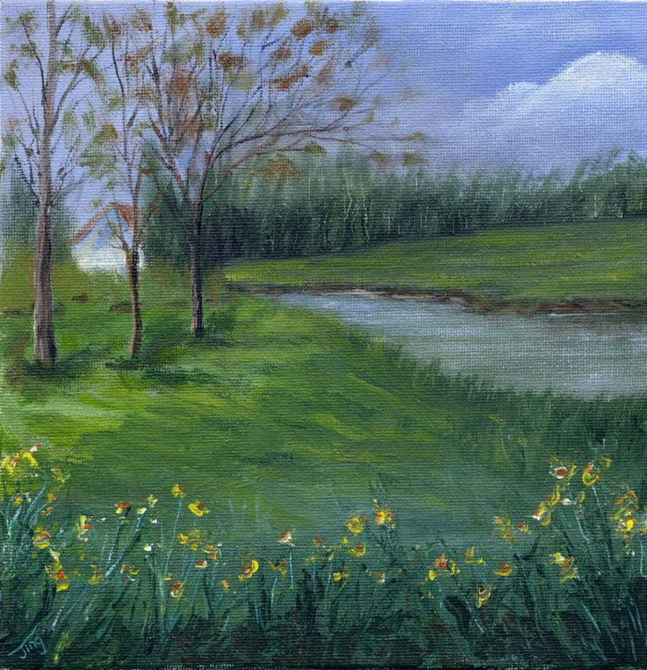 The backyard with daffodils - Image 0