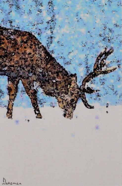 Reindeer Blue - Image 0