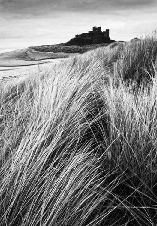 Bamburgh Castle -Northumbrian -