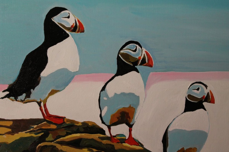 The Three Puffins - Image 0