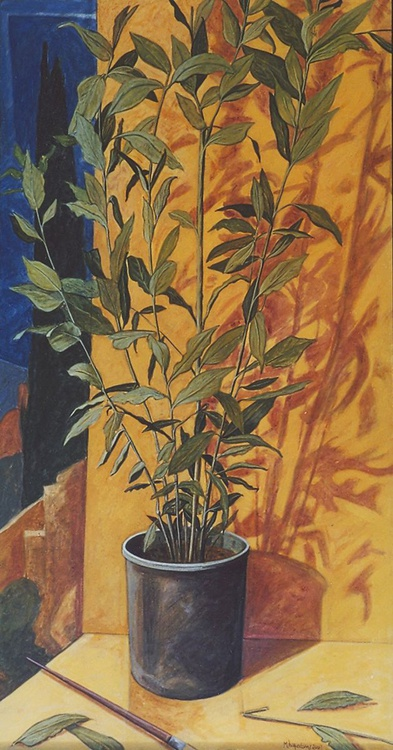 Still life with bayleaf plant - Image 0