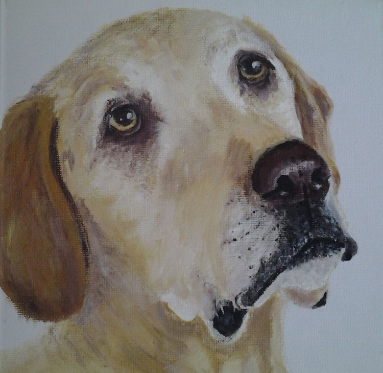 """""""PLEASE, PRETTY PLEASE?"""", acrylic on 20x20cm canvas. Ready to hang - Image 0"""