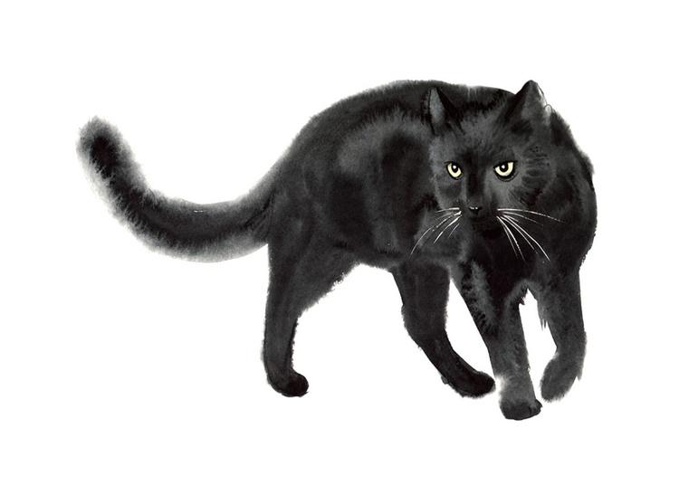 I'm a Panther! Ok...mini panther. - Image 0