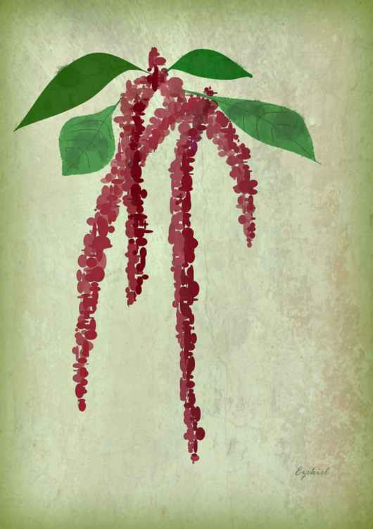Love Lies Bleeding -