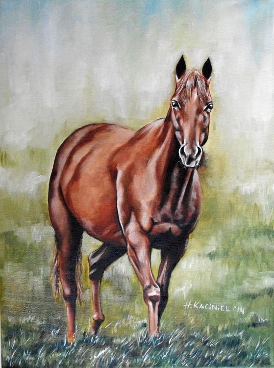 """"""" Horse I """" - Image 0"""