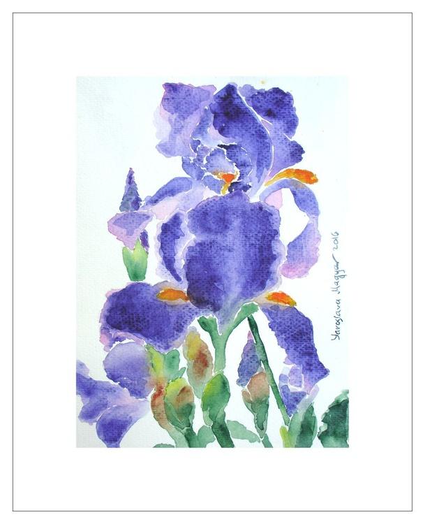 The Irises - Image 0