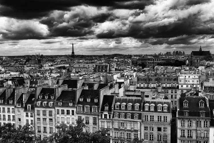 Paris Rooftops -
