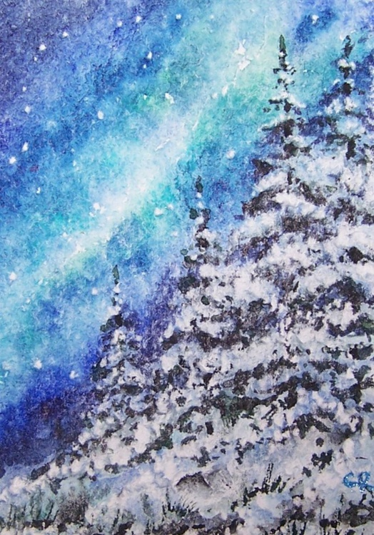 Snow Covered Evergreens - Image 0