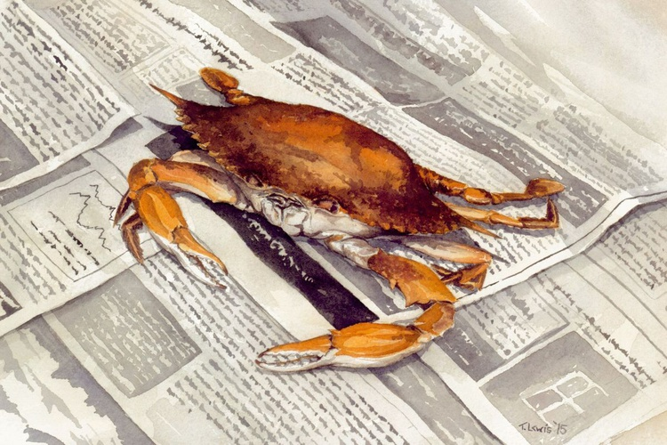 Chesapeake Bay Steamed Crab - Image 0