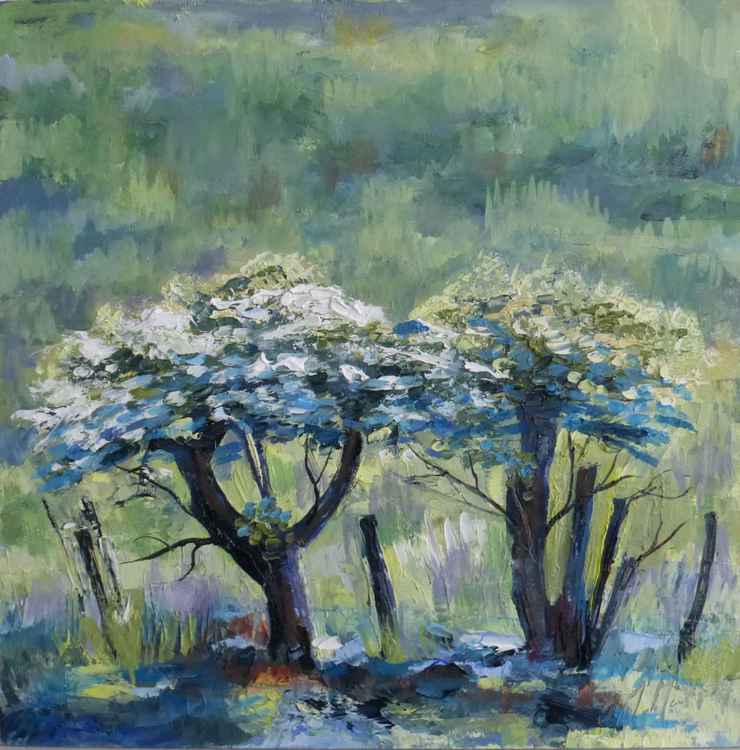 Little Hawthorns -