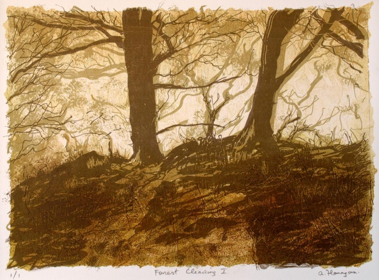 Forest Clearing 1 - Image 0