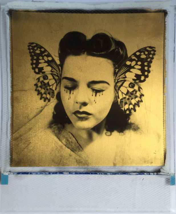 Butterfly collector 24ct gold leaf Polaroid collage -