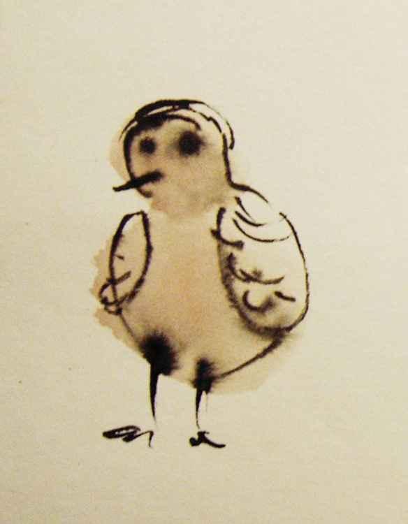 Funny little bird -