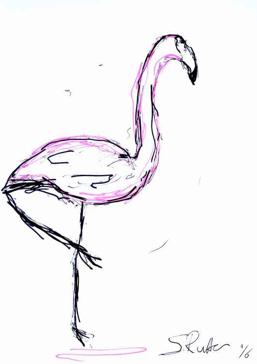 Lonely Pink Bird