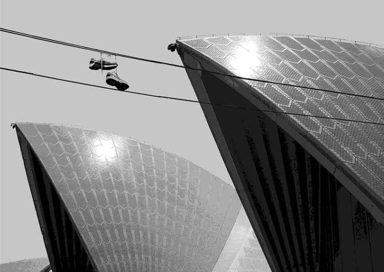 Sydney Opera Runner