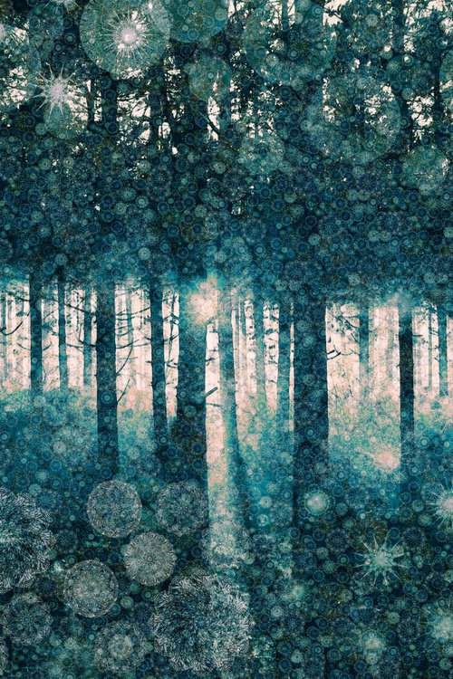 Enchanted Forest (Ltd Edition of only 10 Large Fine Art Giclee Prints from original artwork.) - Image 0