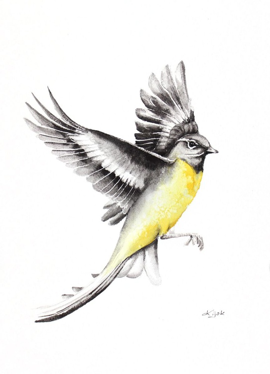 WAGTAIL, bird, birds, animals, wildlife watercolour painting - Image 0