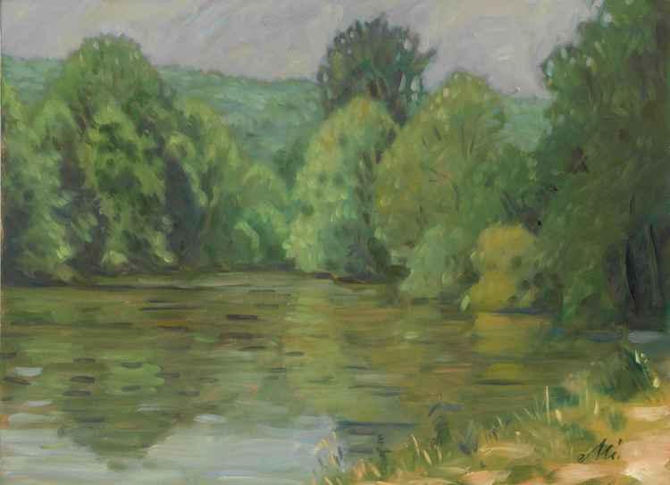 Enz river -