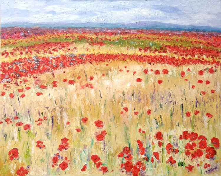 Provence Poppies -