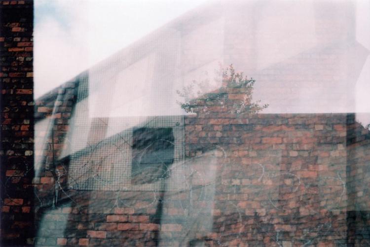 Roof Garden -  1/25 - Unmounted (18x12in) - Image 0
