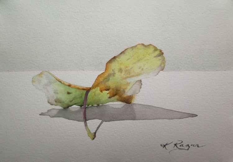 Autumn II -