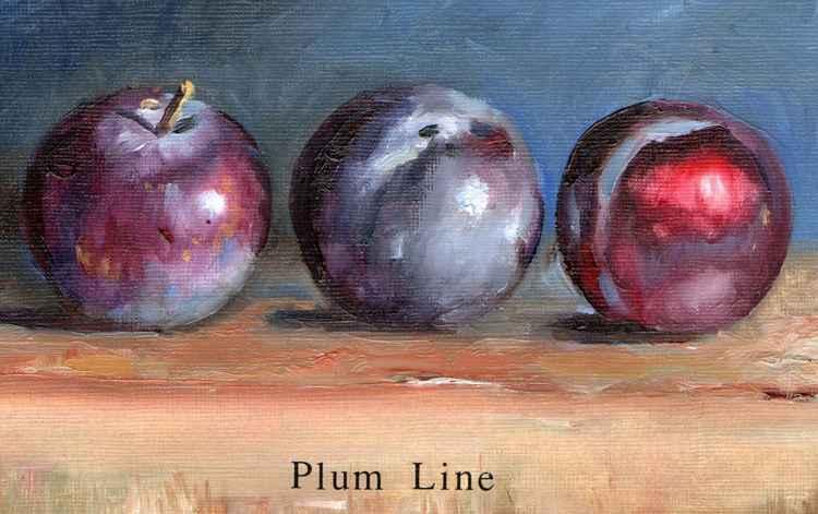 Plum Line