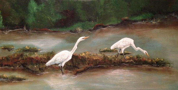 Young Great Egrets - Image 0