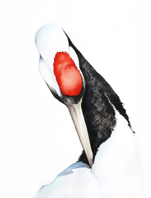 Red-crowned Crane #2,  bird, birds, animals, wildlife watercolour painting - Image 0