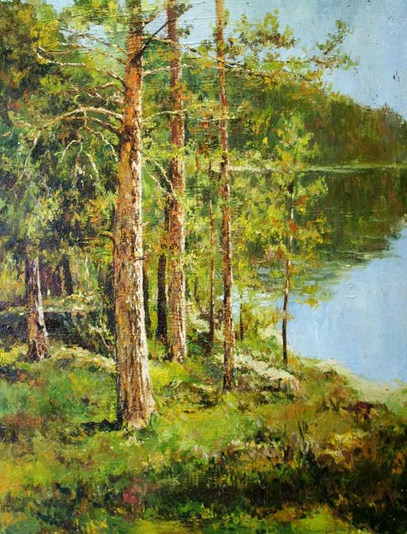 Pine Trees at Lake - Image 0